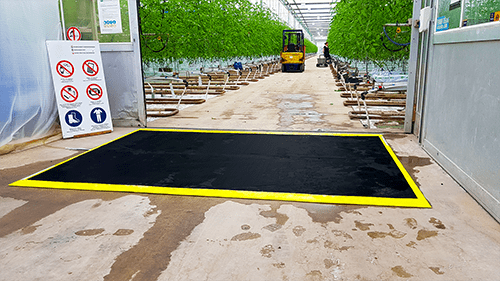 A Flexxomat disinfection mat of Flexxolutions which is used in a greenhouse to disinfect the tires of a forklift truck. Click here and learn more about this product.